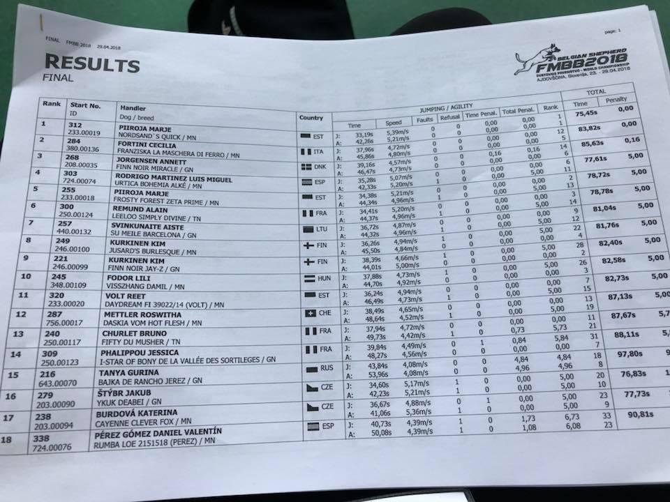 Rangliste Einzelwettbewerb